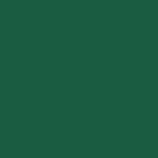 Papierservietten, dunkelgrün, 40x40cm, 60 Stk