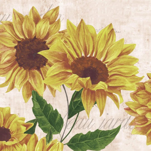 Papierservietten, Gelb, Rosa, 33 x 33 cm