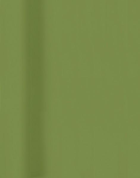 Tischtuchrolle, grün, 118 cm x 5 m
