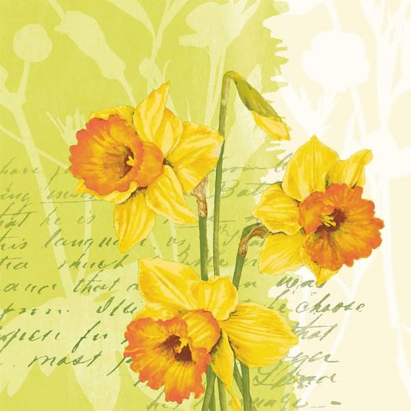 Papierservietten, Grün, Gelb, 33 x 33 cm