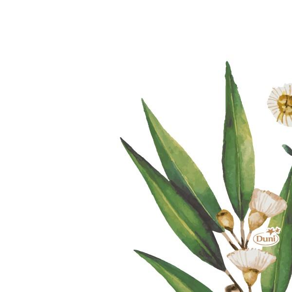 Papierservietten, Weiss, Grün, 24 x 24 cm